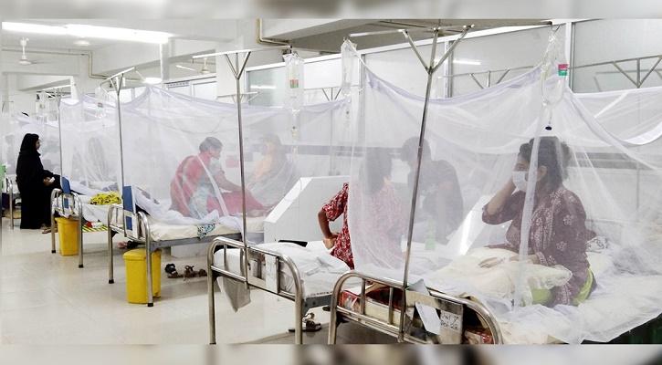 ডেঙ্গু : একদিনে আরও ২৫৬ রোগী হাসপাতালে