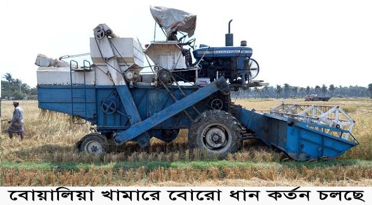 পাইকগাছার বোয়ালিয়া বীজ উৎপাদন খামারে বোরোর বাম্পার ফলন হয়েছে