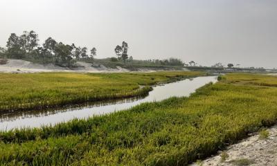 কিশোরগঞ্জে চাড়ালকাটা নদী খননে বছর না যেতেই মরাখাল