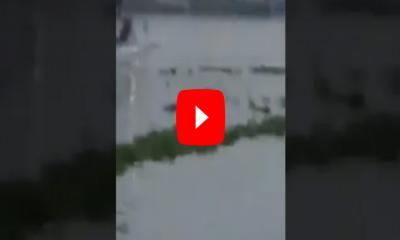 শীতলক্ষ্যায় লঞ্চ ডুবির ভিডিও ভাইরাল (ভিডিও)
