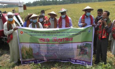 ঝিনাইদহে সমলয় প্রকল্পে কৃষকের টাকা লোপাটের অভিযোগ